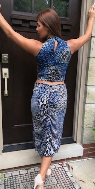 Blue/silver sequined animal print skirt/top - Bailemos Dancewear